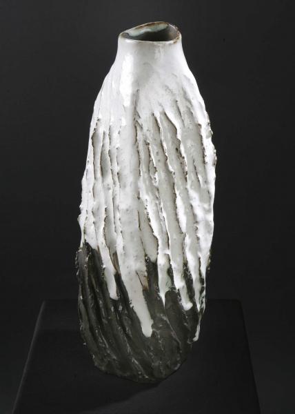 ananda aragundi hanus fusion blanche